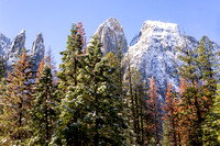 Cathedral Rocks with Snow. Yosemite National Park. California.