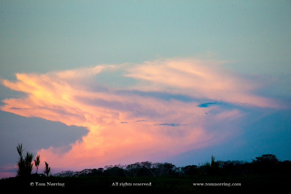 Sunset Clouds. Amazon basin. Peru. South America.
