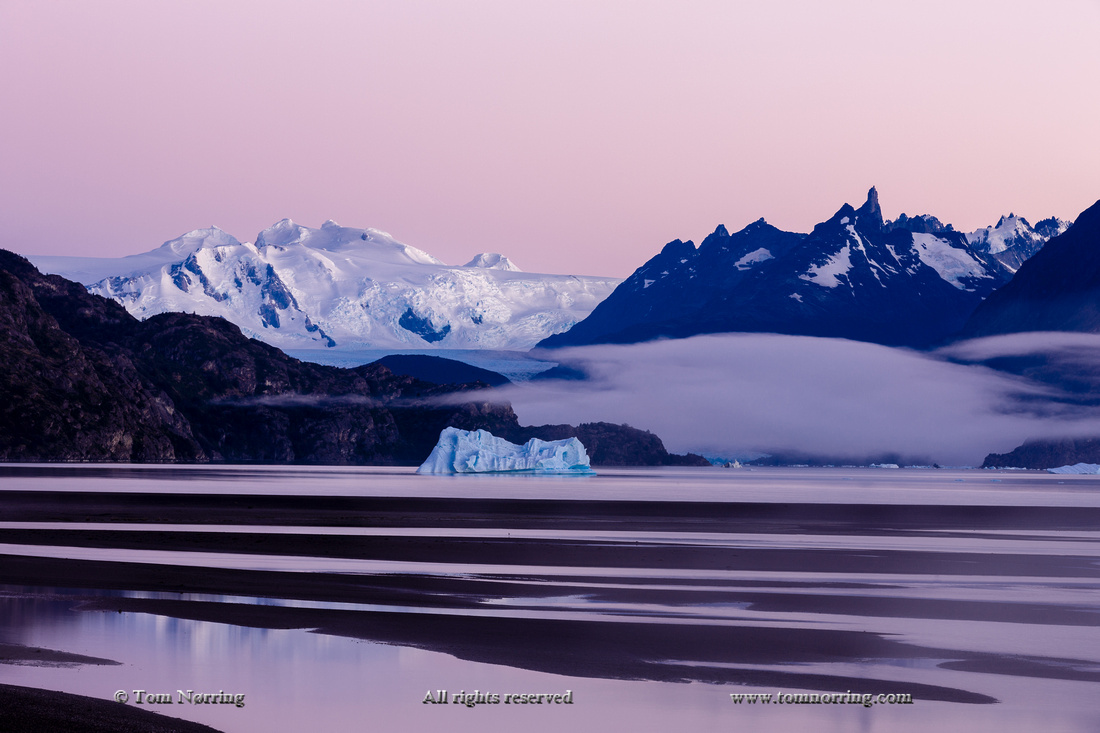 Glacier Grey at Sunrise. Lago Grey. Torres del Paine National Park. Chile. South America. Unesco biosphere.