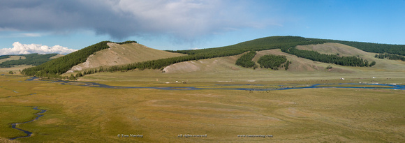 Panorama. Landscapes with Ger Camps and horses, Mongolia.
