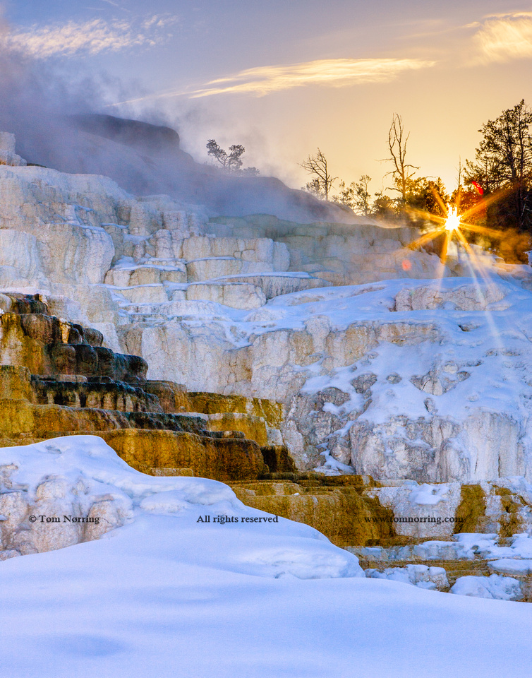 Sunrise over Travertine Terrace, Mammoth Falls. Yellowstone National Park. Wyoming.