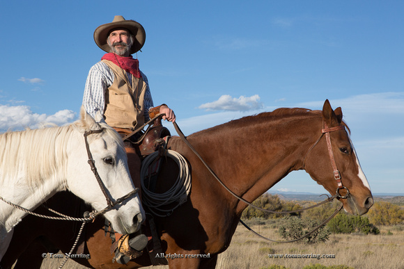 Cowboy with Horse. New Mexico. US.