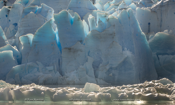 Glacier Grey. Torres del Paine National Park. Chile. South America. Unesco biosphere.