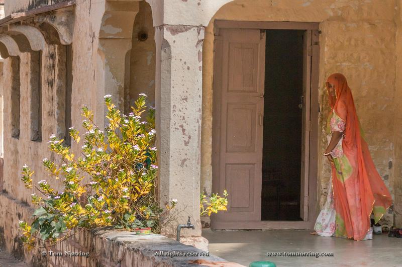 Woman in Sari. Jodhpur. Rajasthan. India.