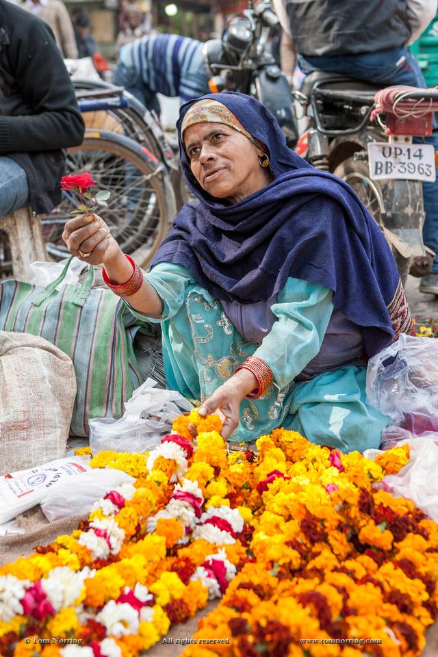 Street scene. Delhi. India.