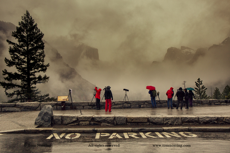 Tunnel View in Rain with Photographers waiting for clearing in the Weather. Yosemite National Park. California.
