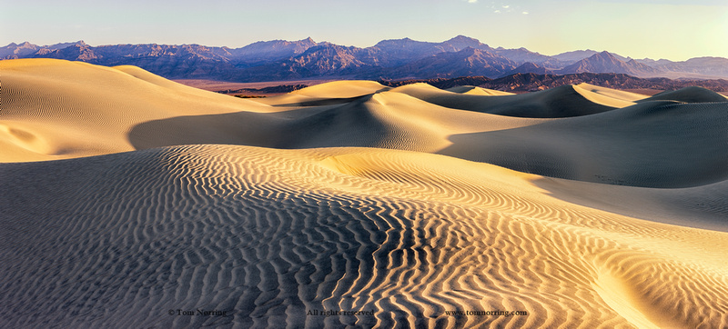 Mesquite Sand Dunes. Death Valley. California.