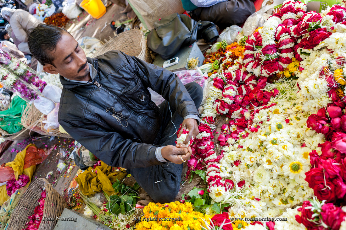Flower vendor. Pink City. Jaipur. Rajasthan. India.